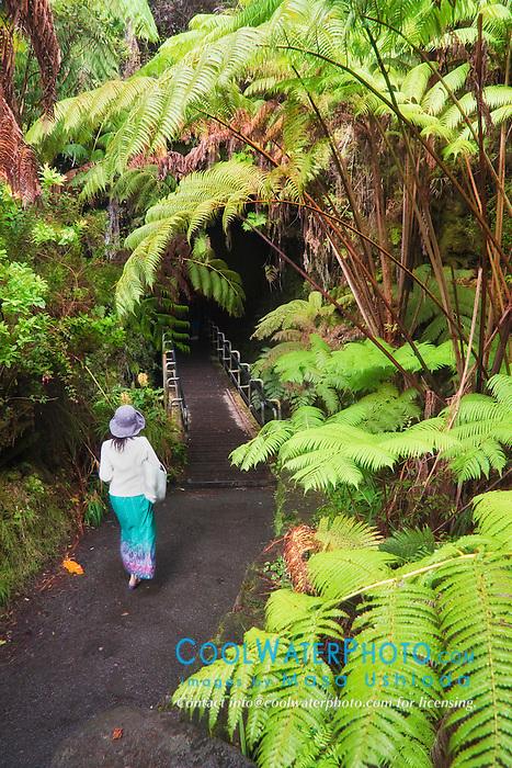 Thurston Lava Tube, Hawaii Volcanoes National Park, Kilauea, Big Island, Hawaii, USA, Model Released - MR#: 000102