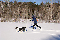 A skier and his dog enjoy fresh snow in the Escanaba River State Forest near Marquette in Michigan's Upper Peninsula.