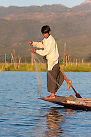 Myanmar, Burma.  Fisherman Preparing his Net as he Balances on one leg, in the style common to Lake Inle, Shan State.