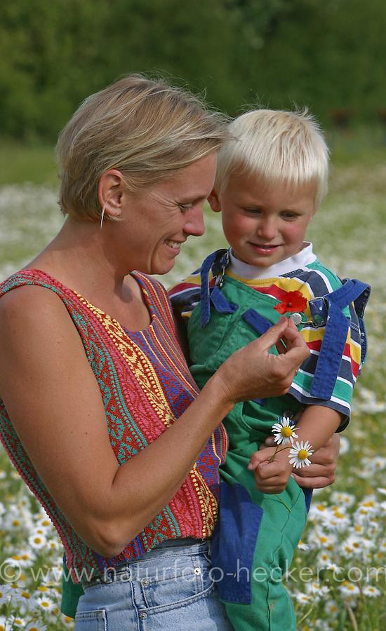 Mutter und Sohn, Kind in Kamillenfeld, Mutter zeigt Klatsch-Mohn-Blüte, Mohn, Blumenpflücken, Geruchslose Kamille, Tripleurospermum perforatum, Tripleurospermum inodorum, Matricaria inodora