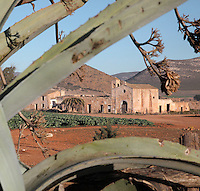 The Cortijo del Fraile, farmhouse and chapel built by Dominican monks in the 18th century, now abandoned, seen through agave pita plants, in the Cabo de Gata-Nijar Natural Park, Almeria, Andalusia, Southern Spain. This is the scene of the notorious 'Crime of Nijar', when a man was shot dead in the chapel to prevent him eloping with a bride promised to the gunman's brother. The park includes the Sierra del Cabo de Gata mountain range, volcanic rock landscapes, islands, coastline and coral reefs and has the only warm desert climate in Europe. The park was listed as a UNESCO Biosphere Reserve in 1997 and a Specially Protected Area of Mediterranean Importance in 2001. Picture by Manuel Cohen