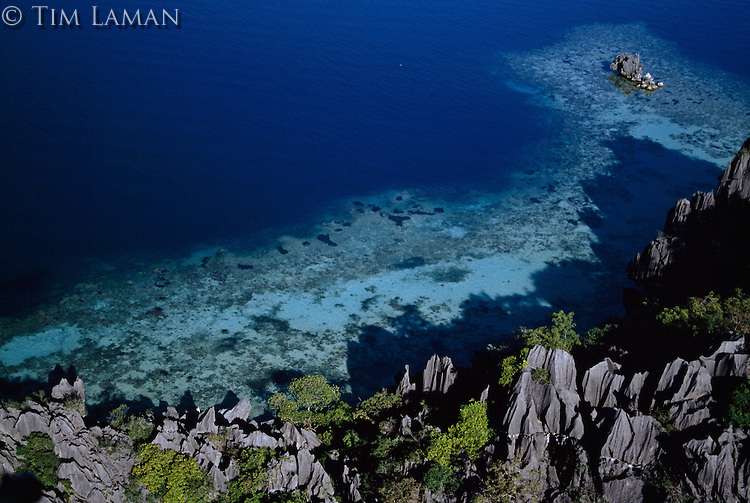 Aerial view of a karst formation-lined shoreline with reefs off shore..Coron Island, Philippines.