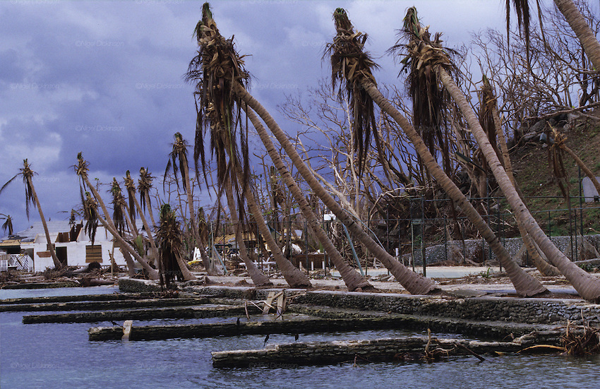 Central America, Honduras, Roatan Islands. Devastation in the aftermath of Hurricane Mitch. High winds and flooding. Soil erosion caused by deforestation. Coastal areas. Infrastructure destroyed.