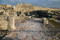 High angle view of a mosaic floor in the House of Venus, Dougga, Tunisia, pictured on January 31, 2008, in the afternoon. Dougga has been occupied since the 2nd Millenium BC, well before the Phoenicians arrived in Tunisia. It was ruled by Carthage from the 4th century BC, then by Numidians, who called it Thugga and finally taken over by the Romans in the 2nd century. Situated in the north of Tunisia, the site became a UNESCO World Heritage Site in 1997. Picture by Manuel Cohen.