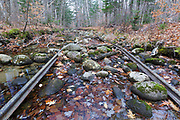 Remnants of an abandoned spur line of the Wild River Railroad in Bean's Purchase, New Hampshire. This was a logging railroad in operation from 1891-1904.