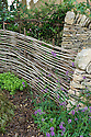 "Dry stone wall and woven hazel hurdle fence, Guy Petheram and Matthew Allan's ""Coppice"" garden, RHS Hampton Court Flower Show 2009. Plants include betony (Stachys officinalis) and sweet woodruff (Galium odoratum)."