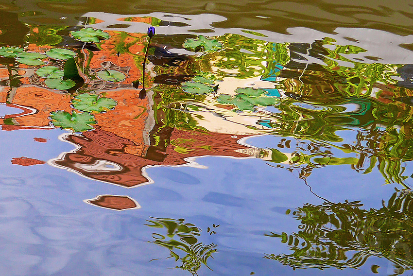 Reflections in a pond, Cambodia