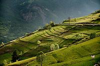 the valleys around Cesana Torinese, in the Piedmont region (Italy, 14/06/2010)