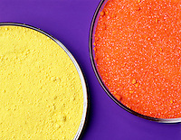 LEAD CHROMATE &amp; POTASSIUM DICHROMATE<br /> PbCrO4 (Yellow) And K2Cr2O7 (Orange)<br /> Differences in the colors of the Chromate and Dichromate ions