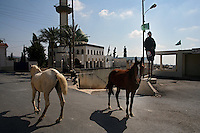 """Rmadiyeh, south Lebanon, Aug 1 2006.About 80 inhabitants from this small village have decided to remain home in spite of Israel's continuous bombardment and shelling for the last 3 weeks, mainly """"because they have nowhere else to go""""."""