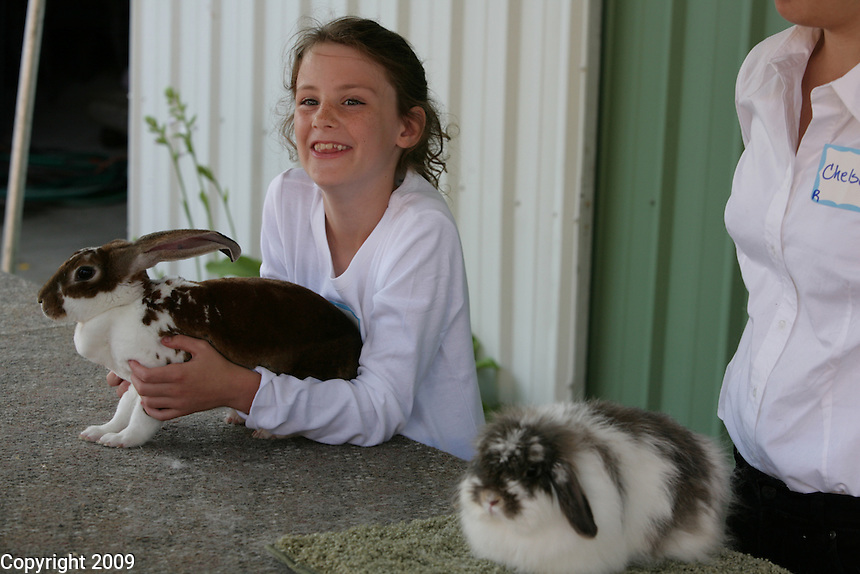Olivia Shannon, 9, of Ferndale, participates in the novice fitting and showing with Seredipity, a velveteen lop, at the NW Washington Fair. August 18, 2009 PHOTOS BY MERYL SCHENKER