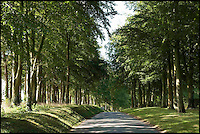 BNPS.co.uk (01202 558833)<br /> Pic: StruttParker/BNPS<br /> <br /> ***Please Use Full Byline***<br /> <br /> Entrance to Manton.<br /> <br /> Kings ransom required to buy one of the most famous Racing estates of the Sport of Kings.<br /> <br /> One of Britain's finest country estates which comes with its own world-class horse racing stables has gone on the market for a whopping &pound;26 million.<br /> <br /> The 2,000-acre Manton estate boasts a 200-year-old manor house, 24 cottages, 10 flats and two hostels, all set in sprawling, quintessentially English countryside.<br /> <br /> But its most impressive feature is its state-of-the-art 400-acre race horse training centre made up of five separate yards with a total of 220 horse boxes and seven gallops.<br /> <br /> The stables have been so successful that they have produced 50 Classics winners over their 150 year history, 10 of which have been under the stewardship of current owners the Sangster family.