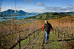 Clay Shannon, a longtime grower in High Valley, walks through his vineyard that sits above Clear Lake, and with a view of Mt. Konocti, in Clearlake Oaks, Ca., on Saturday, Jan. 30, 2010. Shannon, who moved to the area in 1995, owns the Shannon Ridge label and 1250 acres of vineyard.