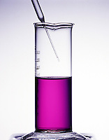 REDUCTION OF MANGANATE ION<br /> 1 of 3: Before Reaction<br /> Purple potassium permanganate (KMnO4) in a basic solution before addition of sodium sulfite (Na2SO3).