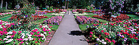Formal Flower Garden in Beacon Hill Park, Victoria, BC, Vancouver Island, British Columbia, Canada - Panoramic View