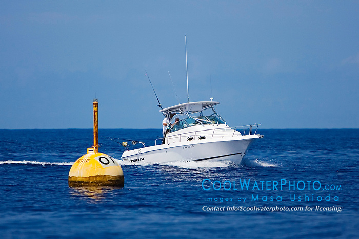 Otec fad and sport fishing boat masa ushioda for Fishing big island hawaii