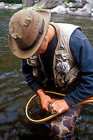 A fisherman removes the fly from the mouth of a brown trout caught on Rock Creek near Missoula Montana.