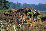 Asia, Nepal, Bardia. Traditional farm home in the Terai region of Bardia, Nepal.