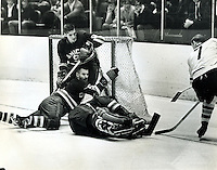 California Golden Seals in  Western League action 1967. (photo/Ron Riesterer.