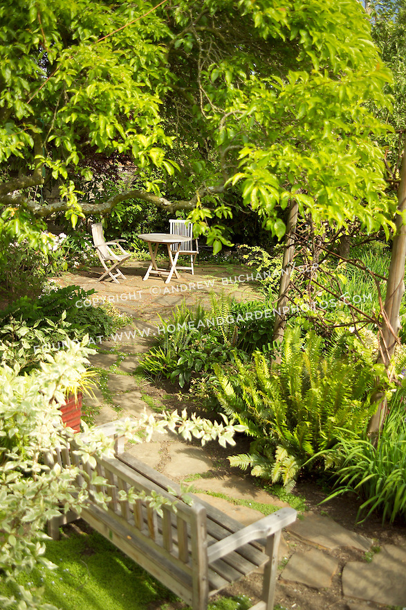 in the summer sunshine, two folding teak chairs and a teak bench sit on a small residential, backard patio accessed via a flagstone path bordered on both sides by lush gardens