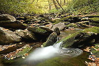 """MOUNTAIN FLOW"" -- A remote stream in Great Smoky Mountains National Park. The park is located on the border of North Carolina and Tennessee in the southern Appalachian mountains."