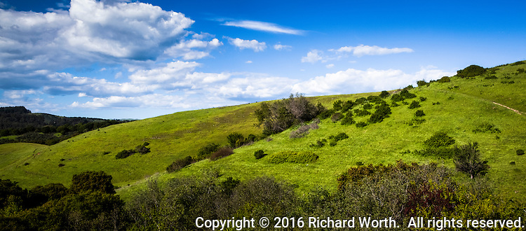 Blue sky with scattered clouds over rolling green hills at the far southern end of Lake Chabot Regional Park in Castro Valley, California.