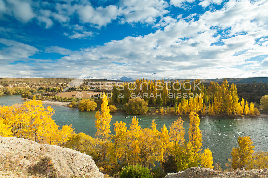 Autumn trees along the edge of the Clutha River, blue sky, South Island, New Zealand