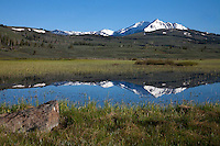 Swan Lake marshes are flooded in the spring runoff. A natural occurrence which actually nourishes the micro ecosystem of the area.<br /> Swan Lake, Mammoth area, Yellowstone