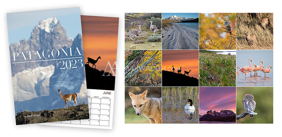 **For international orders, please click on the red text in the top right corner.**<br /> <br /> The 2017 Wild Australia calendar features bizarre, cute and fascinating wildlife from Down Under.<br /> <br /> Each month's photo measures a full 11 x 11, so these calendars now look even better on your wall. Calendars are printed on full 11&quot; x 17&quot; pages, spiral-bound at the top. Each interior page contains an image and full calendar for the month, so they are the equivalent of an 11&quot; x 8.5&quot; calendar that is folded open. Note that these calendars do not come with a pre-punched hole for hanging.