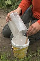 Kinder gießen Tierspur aus Gips, Mädchen hat Gips abgemessen und füllt diesen zum Gipsanrühren in alten Becher