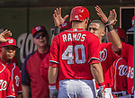 15 September 2013: Washington Nationals catcher Wilson Ramos is greeted by Ian Desmond in the dugout after hitting a solo home run in the 6th inning for the Nationals' 6th run against the Philadelphia Phillies at Nationals Park in Washington, DC. The Nationals took the rubber match of their 3-game series 11-2 to keep their wildcard postseason hopes alive. Mandatory Credit: Ed Wolfstein Photo *** RAW (NEF) Image File Available ***