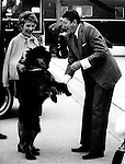 President and Nancy Reagan are greeted by their dog when arriving at their home in Santa Barbara California,