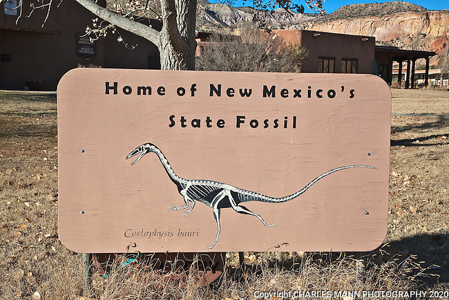 The fossil remains of Coelophysis bauri were found on the property of Ghost Ranch near Abiquiu and became the official New Mexico state fossil and dinousuar.
