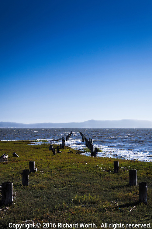 Abandoned pilings chart a path into San Francisco Bay under a clear blue sky with the Santa Cruz Mountains on the horizon.