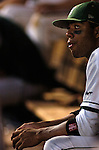 03 Jun 2006 Lincoln, NE Manhattan University's Angel Aponte watches as the game gets out of reach in the eight inning against the.University of Miami during the NCAA Baseball Regionals at Haymarket Park in Lincoln, Ne Saturday night.(Chris Machian/Prairie Pixel Group)