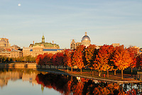 Canada, Montreal, Bonsecours Park and Hotel de Ville with fall foliage