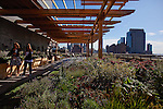 A green roof/roof deck has been recently completed at 250 Hudson St., which features plants, landscaping, and seating areas. Buildings are installing green roofs as an amenity for their tenants. (Photo by Robert Caplin)