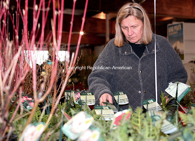 GOSHEN, CT-27 April 2007-042707MK04 Kati Banyai, from Lakeville, looks over the wide varity of native plants at the Northwest Conservation District's 25th annual Earth Day Plant sale at the Goshen Fair Grounds.  The event which runs today from 9 a.m. to 4 p.m. and tomorrow from 9 a.m. to 3 p.m. is a major fund raiser for the Conservation District.  Purchases provide funding for local conservation projects and education in addition to helping to curb climate change by planting items that absorb greenhouse gas pollution.   Michael Kabelka / Republican-American(Kati Banyai, from Lakeville) CQ