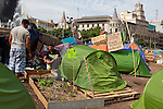 Garden and campers at protest camp at Placa de Catalunya, Barcelona, Spain. The signs read: &quot;Animals and music will make you a better person; put a dog and a flute in your life&quot;. The square has been relatively quiet since police attacked and beat protestors on May 27 2011. quiet since police attacked and beat protestors on May 27 2011.