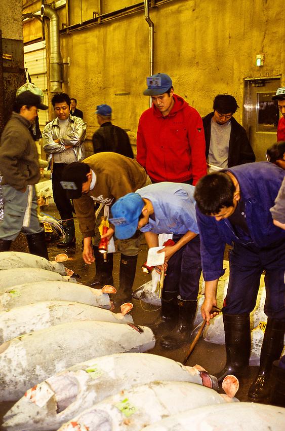 Tuna auction, Tsukiji Fish Market (Tokyo Central Wholesale Market), Tokyo, Japan