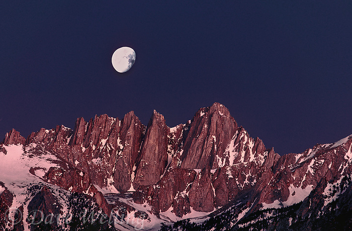 711700103 moonset over mount whitney before daybreak in the eastern sierras near lone pine califonria