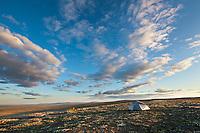 Tent camp in the Utukok uplands, National Petroleum Reserve Alaska, Arctic, Alaska.