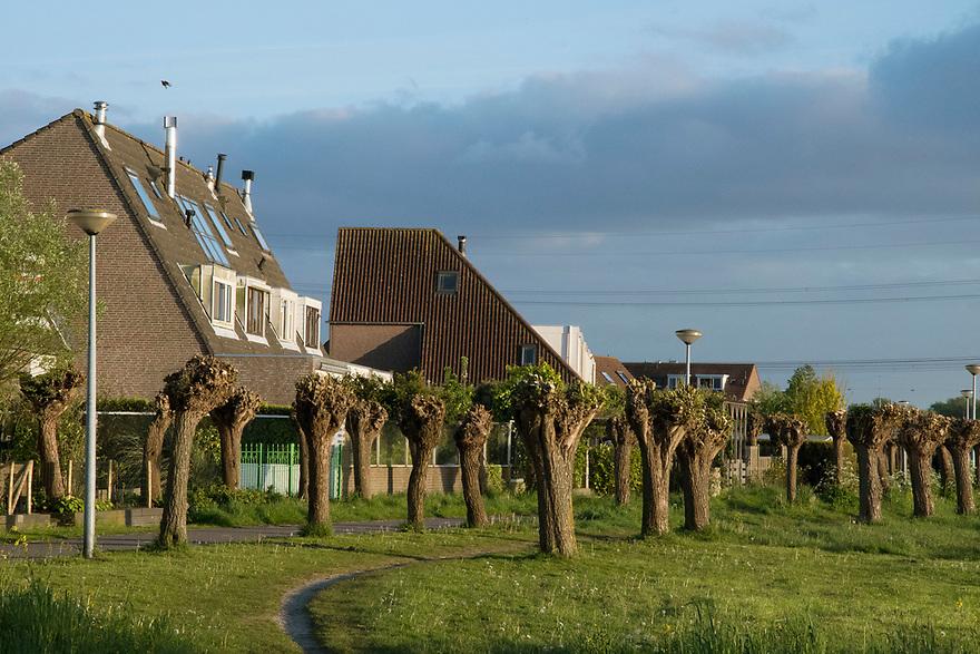 Nederland, Landsmeer, 20170509<br /> Landelijk wonen in Landsmeer. Huizen aan de rand van de bebouwing, grenzend aan het water Twiske. <br /> <br /> Foto: (c) Michiel Wijnbergh