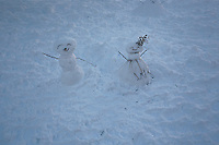 A couple of snowmen are seen in Washington Square Park after the pass of the winter storm JONAS, in New York, 01/24/2016. Photo by VIEWpress