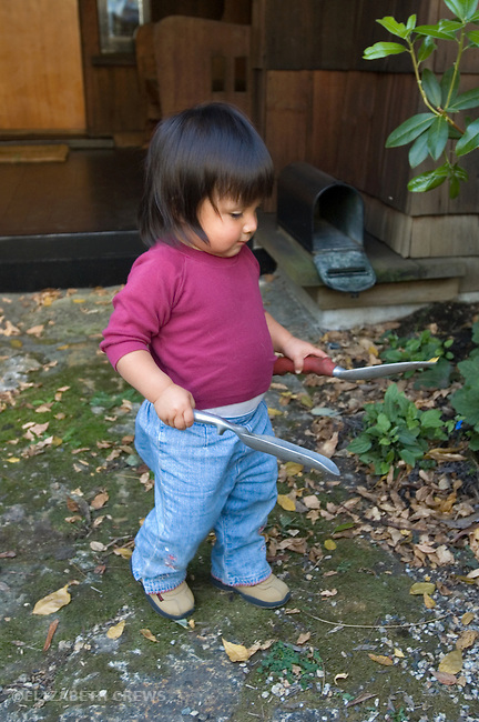 Berkeley CA Guatemalan girl, eighteen-months-old, experimenting with gardening tools  MR