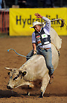 Hayden Church competes in the open bullriding. Trans-tasman rodeo at the Waimarino Showgrounds, Raetihi, New Zealand on Sunday, 20 March 2011. Photo: Dave Lintott / lintottphoto.co.nz