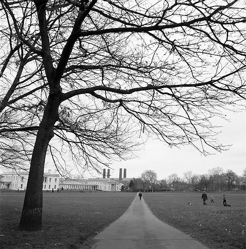Greenwich Park, London, 2012 by Paul Cooklin