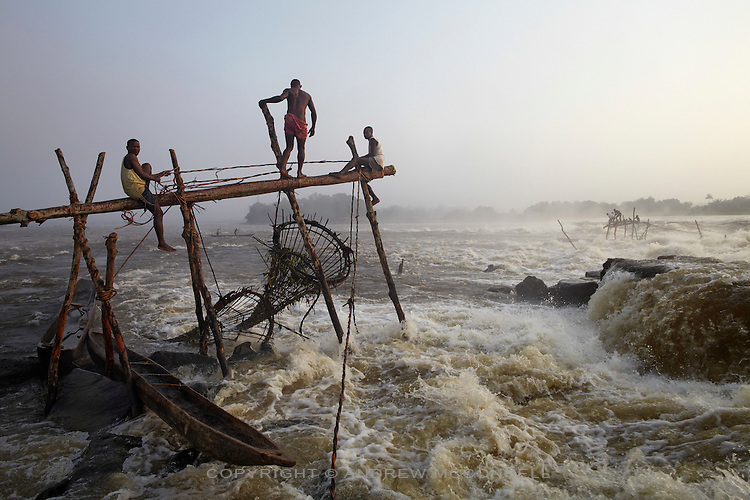 Fishermen check their baskets at Wagenia Falls in the middle of the Congo River, near Kisangani, DR Congo. Most of the wooden frames are built near the river's edge but some of the fishermen build frames in the very center of the river were the flow is greatest as they believe this is where the strongest, and biggest, fish live.