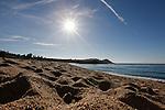 Point Lobos Nature Reserve near Monterey, CA