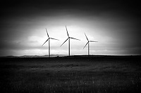 A triplet of wind generators indure a spring storm in Pincher Creek